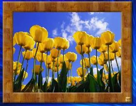 Picture Frames (Landscape)