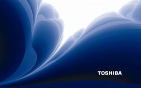 Toshiba Logon