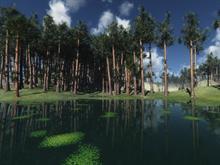 Nature v2