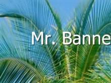 Mr. Banner