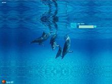 Dolphin1280