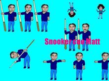 Snooker cue Matt