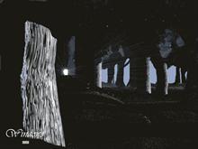 Dark Forest - Secret Door To Other Worlds