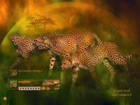 Cheetah World