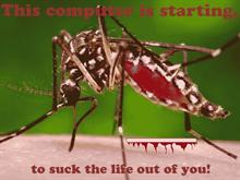blood suckin bug