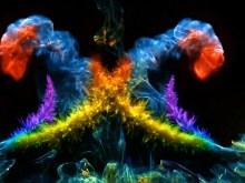 Colors II Slo Mo