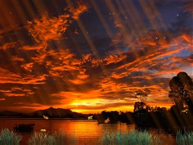 sunset_Butterfly