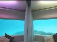 the wonder lounge