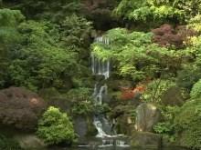 jardin's garden waterfalls