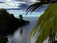 Tropical Silence