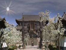 Chinesischer Palast