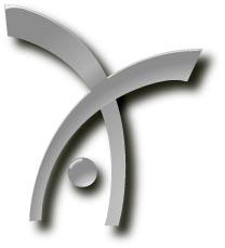 handspring icon