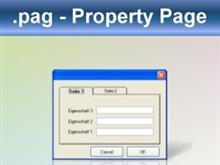 Visual Basic: Property Page(*.pag)