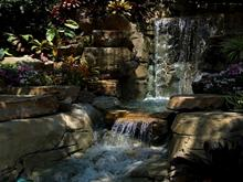 Waterfall Uncovered