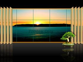 Bonsai Window