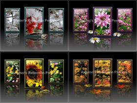 Seasons'  Reflections Wall Pack
