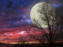 Super Moon LV