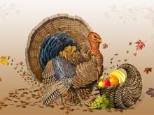 Thanksgiving Tom