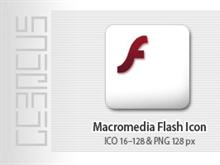 Macromedia Flash *boxed