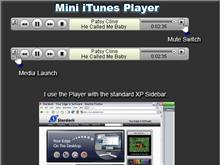 Small iTunes Player