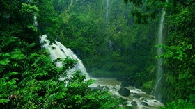 Green_Jungle_Triple_Waterfalls